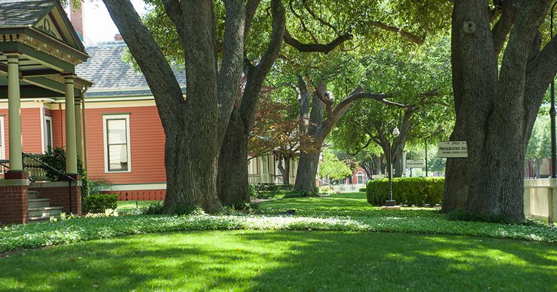 Wilson Historic District in Dallas